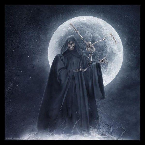 Ange de la mort - Cuisiner trompette de la mort ...
