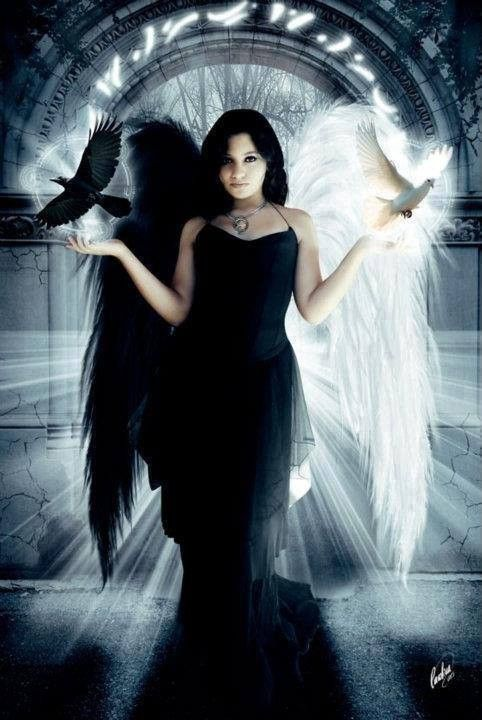 ange mi noir mi blanc