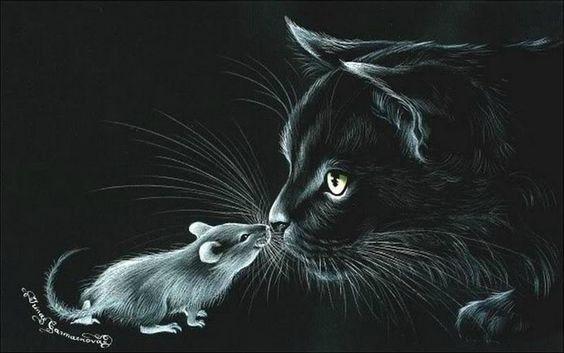 Черный кот на фоне черном
